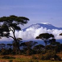 """Тур """"Восхождение на Килиманджаро"""" (7 дней)"""