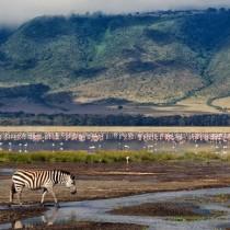 Экзотический тур по Африке (Уганда-Кения -Танзания-Занзибар)
