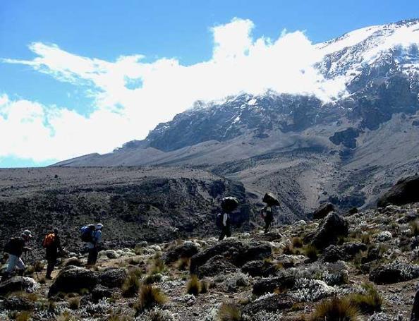 "Фото-галерея тура ""Восхождение на Килиманджаро"""