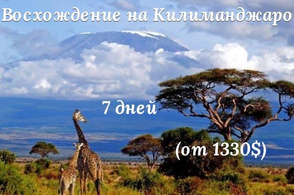 Килиманджаро восхождение