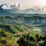 Тур в Африку «Сафари в Танзании и отдых на Занзибаре»